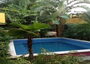 palomas-boutique hotel