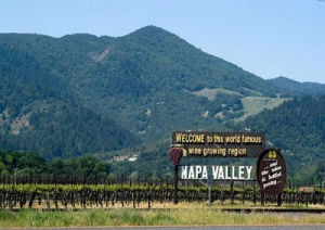 Napa-Valley-marcopolonews