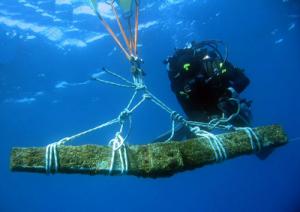 archeologia-subacquea-marcopolonews