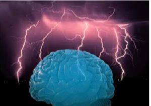 cervello-marcopolonews