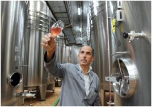 francia produttore vino-marcopolonews