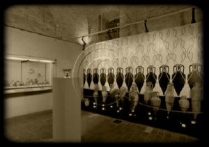 museodelvinoditorgiano11-marcopolonews