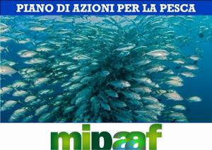 piano-di-azioni-per-la-pesca-marcopolonews