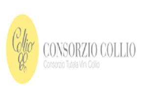 collio-marcopolonews