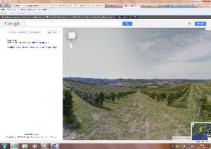 google-maps-marcopolonews