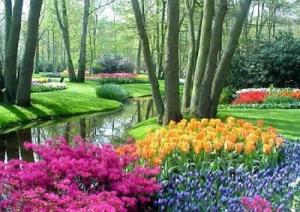 giardino-fiorito-marcopolonews