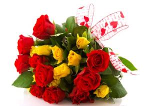 rose-marcopolonews