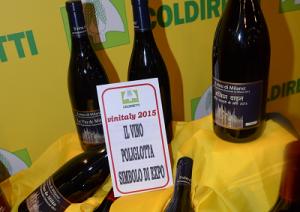 vino-poliglotta-marcopolonews
