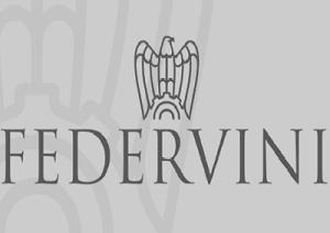 federvini-marcopolonews