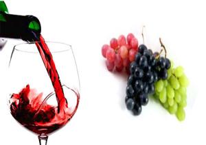 vino-salute-marcopolonews