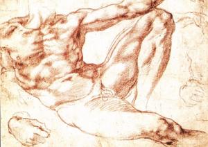 Michelangelo 2 png