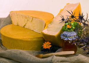 formaggioSanPietroCeraApi-marcopolonews