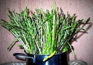 asparagi-selvatici mpn