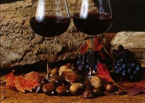 vino-novello1-marcopolonews