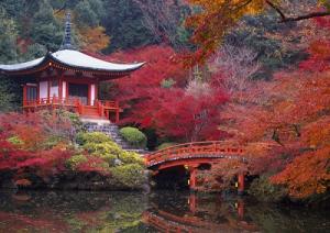 giardino-giapponese2-marcopolonews
