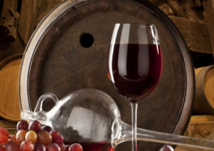 vino-terrano-marcopolonews
