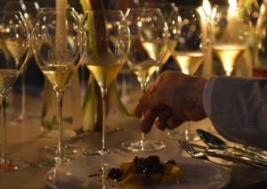 vinoforum-class-marcopolonews